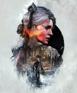 The Witcher 3: Wild Hunt. Steelbook seul (version PS4 avec Ciri)